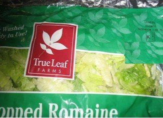 True Leaf Farms is voluntarily recalling romaine lettuce that was shipped between September 12 and 13 on fears of a Listeria contamination