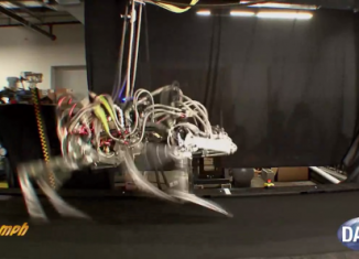 Cheetah, a four-legged and headless robot, has set a new world speed record, according to DARPA