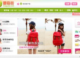 Tech blogs say there are about 20 Chinese clones of Pinterest already