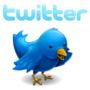 Twitter taken down by cascading bug