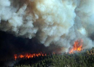 Two of the biggest ever wildfires in the US have hit states of Colorado and New Mexico and hundreds of firefighters have joined efforts to tackle them