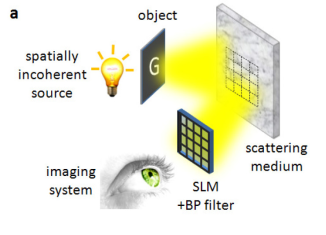 """Israeli scientists have found a novel way to get images through """"scattering"""" materials such as frosted glass or skin"""