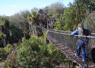The Wild Africa Trek is a pricy tour Disney added 18 months ago to give some guests the opportunity to have a more personalized view of the Animal Kingdom