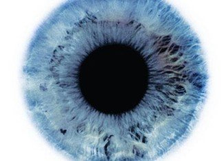 Scientists have developed Hirisplex, a forensic test that can predict both the hair and eye color of a possible suspect using DNA left at a crime scene