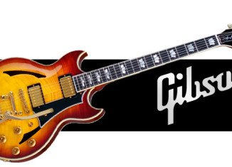 The US government has settled its legal case against the iconic Gibson Guitar company over use of illegal timber from Madagascar in its instruments