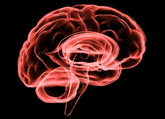Tests in primates had suggested NA-1 prevented brain cells dying when a stroke starved them of oxygen