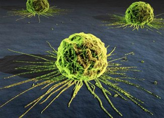 Q-Cancer will allow doctors, nurses and pharmacists to quickly identify all known types of cancer while the patient waits