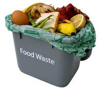 A UK-based report has found that as much as half of the world's food, amounting to two billion tonnes worth, ends up being thrown away