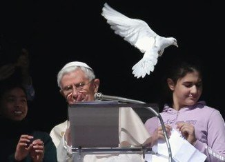 A seagull swooped in and attacked the dove released by Pope Benedict XVI from a balcony at the Vatican on Holocaust Day