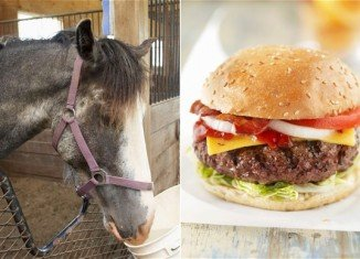 EU food safety experts are due to meet in Brussels to address the scandal over mislabelled horsemeat