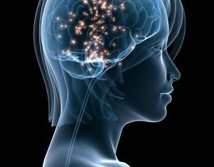 Brain scans allow researchers to know exactly what a person is imagining