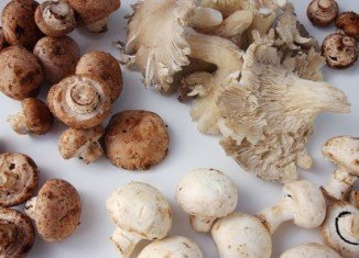 The mushroom plan is being touted as the latest weapon for savvy celeb dieters who want to shed pounds quickly but still keep some of their curves