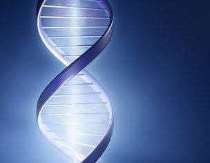The US Supreme Court has ruled unanimously that human genes may not be patented