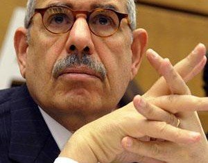 Egypt's new president, Adly Mahmud Mansour, says pro-reform leader Mohamed ElBaradei has not yet been appointed as interim prime minister despite earlier reports