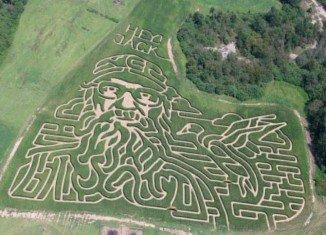 Misty and Lamar Duren's corn maze looks like Si Robertson