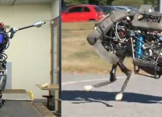 Boston Dynamics has presented its latest creations, Atlas and WildCat