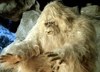 The legendary Himalayan yeti may in fact be a sub-species of brown bear
