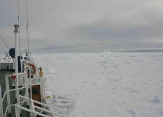 Akademik Shokalskiy ship has 74 on board and is being used by the Australasian Antarctic Expedition