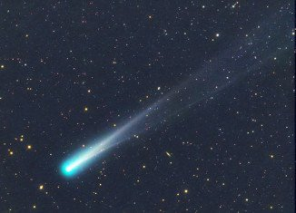 Comet ISON was burned to death on its maiden voyage around the Sun