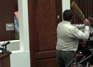 The forensics expert has swung a cricket bat at a toilet door erected in the courtroom at Oscar Pistorius' murder trial