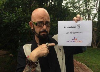 Jackson Galaxy is a cat behaviorist with more than fifteen years of experience and the host of Animal Planet's hit show My Cat From Hell