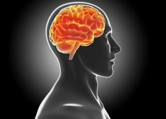 Stem cells can be used to heal brain damages caused by Parkinson's disease