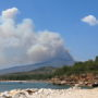 Greece Fire: Serious Indications that Arsonist Set Fires that Killed 83